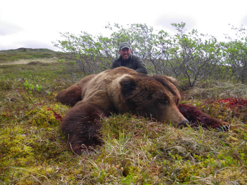 Ugashik Bear Camp - Hunter with Brown Bear and Arctic North Guides